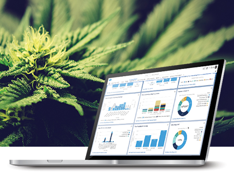 Spend More Time Growing Your Cannabis Business by Automating Production, Supply Chain, and More