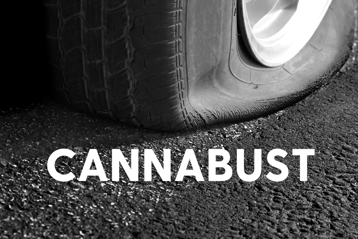 Has Cannabusiness Gone Cannabust?